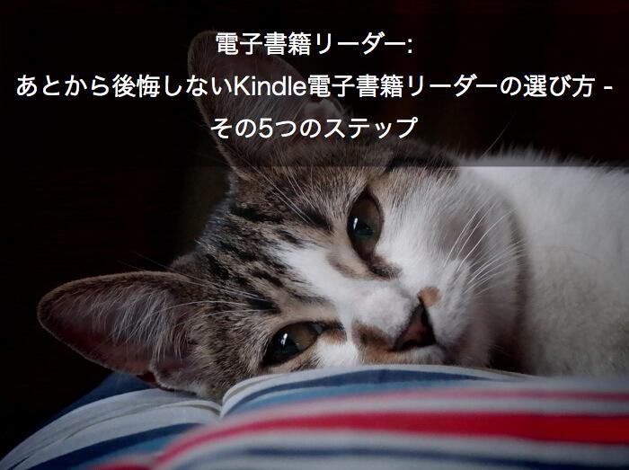電子書籍リーダー: あとから後悔しないKindle電子書籍リーダーの選び方 - その5つのステップ